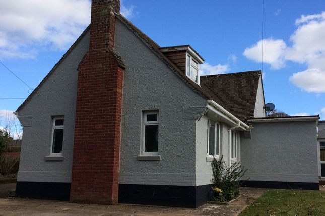 Thumbnail Detached house to rent in Uplowman Road, Tiverton
