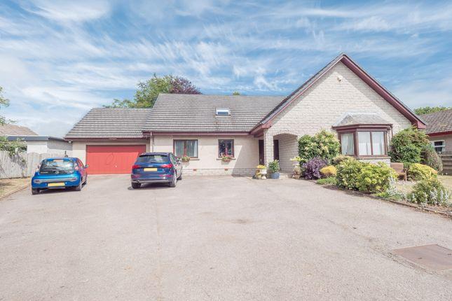 Thumbnail Detached house for sale in Coronation Avenue, Montrose