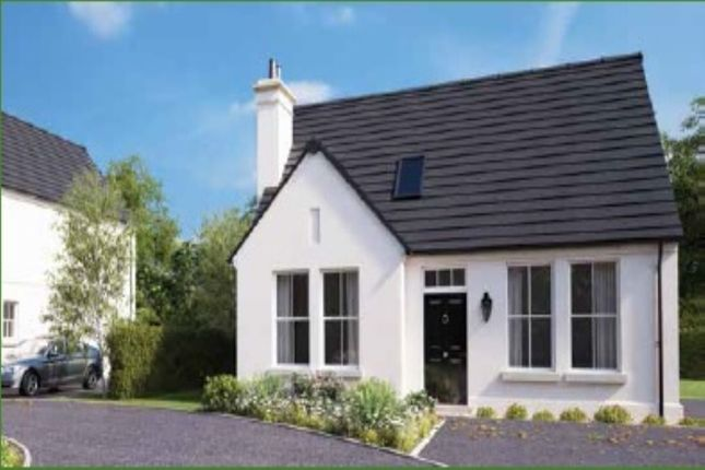 Thumbnail Detached house for sale in Belfast Road, Ballygowan, Newtownards