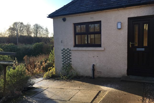 Thumbnail Semi-detached house to rent in Farnell, Brechin