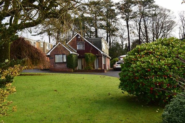 Thumbnail Detached house for sale in The Lodge Close, Sketty, Swansea