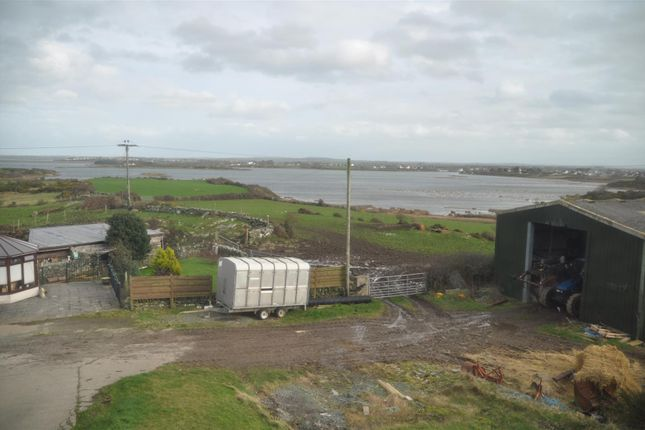 Laurad (9) of Trearddur Bay, Holyhead LL65