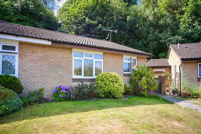 Thumbnail Bungalow for sale in Arbourvale, St. Leonards-On-Sea