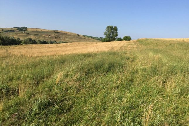 Thumbnail Land for sale in Transylvania, Brasov, Romania