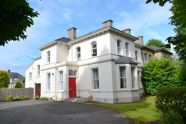 Thumbnail Flat to rent in 4, 31 Osborne Park, Belfast
