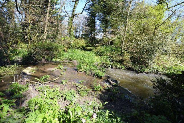 Garden of East Knoyle, Salisbury SP3