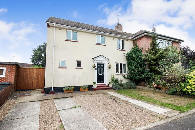 Thumbnail Semi-detached house for sale in Normandy Avenue, Colchester