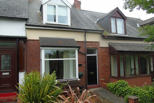 Thumbnail Terraced house to rent in Alexandra Terrace, Sunniside, Newcastle Upon Tyne