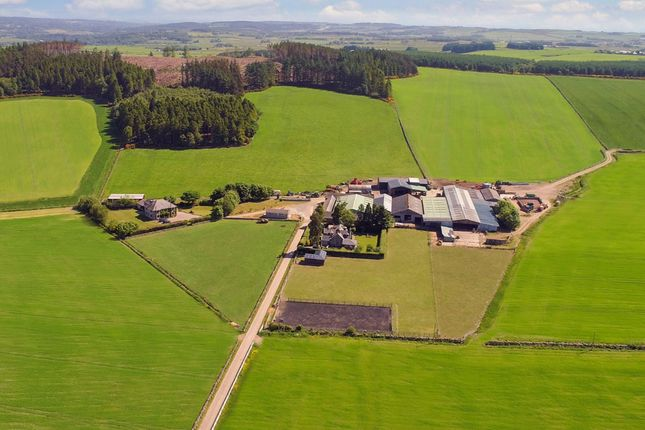 Thumbnail Farm for sale in Durris, Banchory