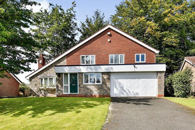 Thumbnail Detached house for sale in Castle View, Chester Le Street