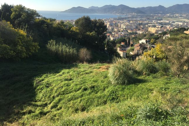 Thumbnail Land for sale in Cannes La Bocca, Alpes Maritimes, France