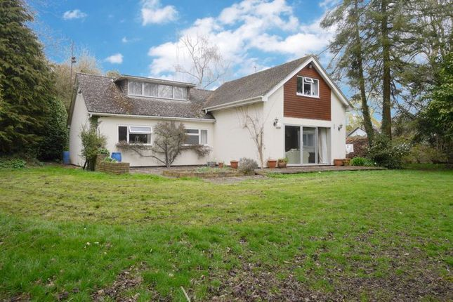 Thumbnail Bungalow for sale in Berrick Salome, Wallingford