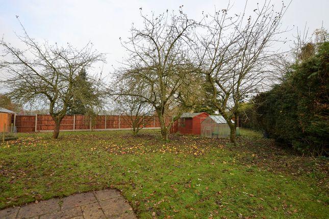 Thumbnail Detached bungalow for sale in Dereham Road, Westfield, Dereham, Norfolk.