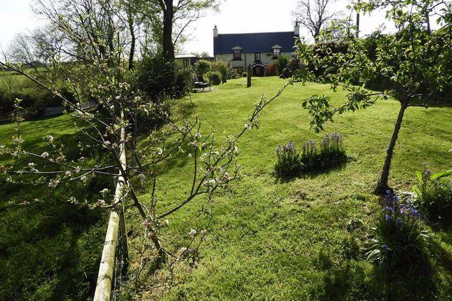 Thumbnail Detached house for sale in Jeffreyston, Kilgetty, Pembrokeshire