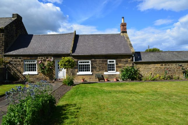 Thumbnail Cottage for sale in Woodhorn Village, Ashington