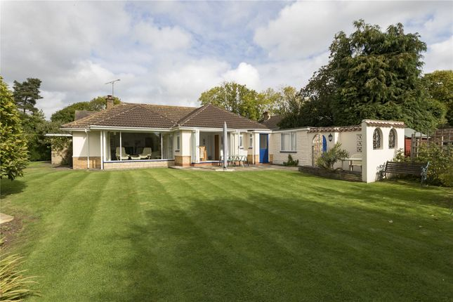 Thumbnail Detached bungalow for sale in Holly Bush Lane, Priors Marston, Southam, Warwickshire