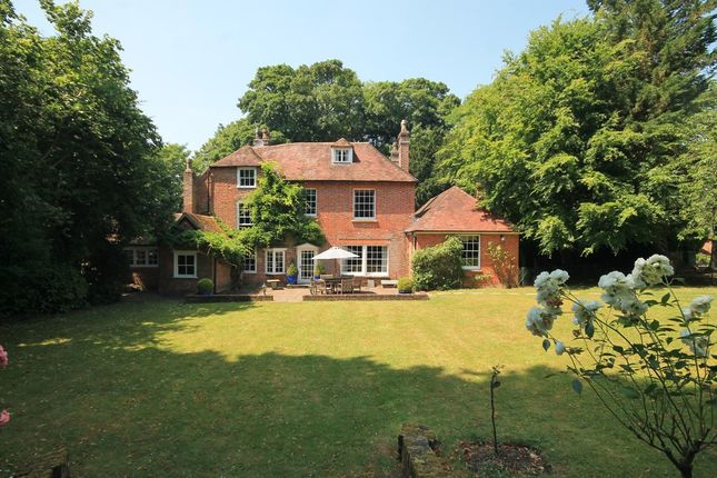 Thumbnail Detached house for sale in Free Street, Bishops Waltham, Southampton