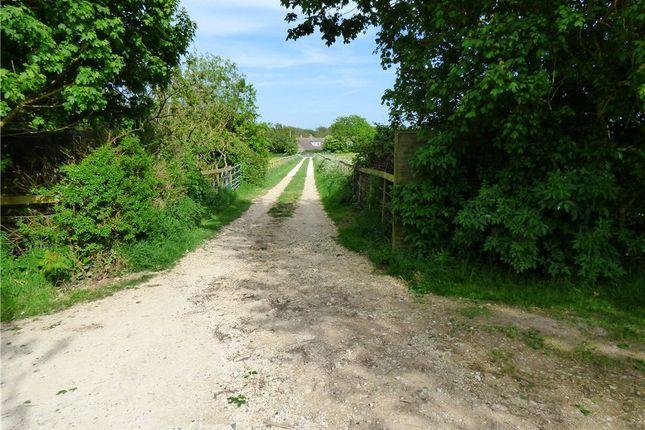 Access Track of Shortlake Lane, Osmington, Weymouth, Dorset DT3
