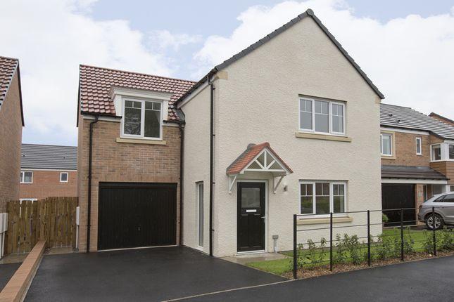 Thumbnail Detached house for sale in Stannington Park, Off Green Lane, Stannington