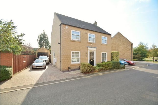 Thumbnail Detached house for sale in Columbine Road, Ely
