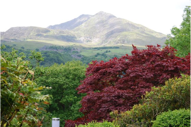Thumbnail Detached house for sale in Capel Curig, Betws-Y-Coed