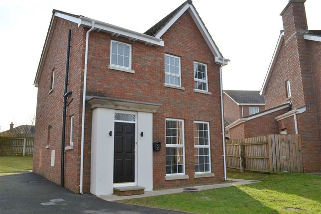 Thumbnail Detached house for sale in 9, Demesne Way, Downpatrick