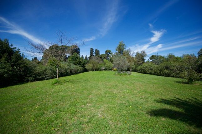 Thumbnail Property for sale in Baillargues, Herault, France