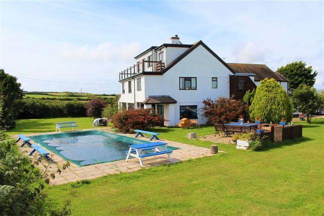 Thumbnail Detached house for sale in Port Eynon, Swansea