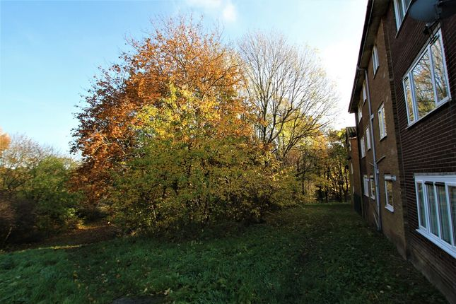 Rear Views of Colley Drive, Ecclesfield, Sheffield S5