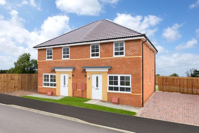 "3 bedroom semi-detached house for sale in ""Maidstone"" at Coxhoe, Durham"