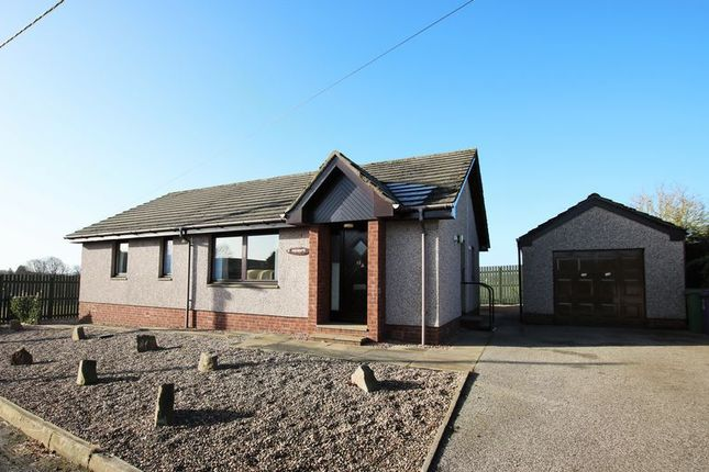 Thumbnail Property for sale in Guthrie Street, Letham, Forfar