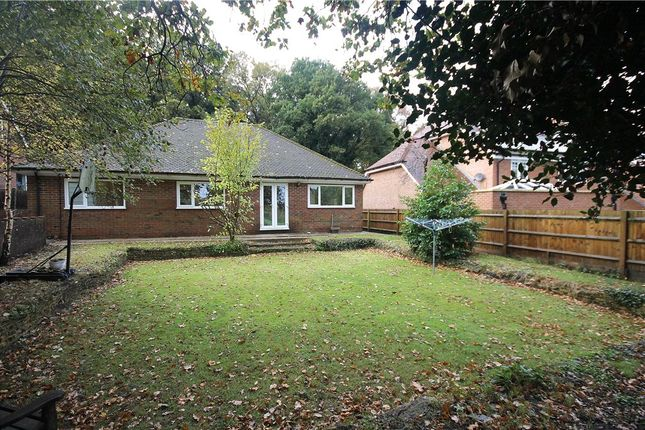 3 bed detached bungalow to rent in Wellington Avenue, Virginia Water