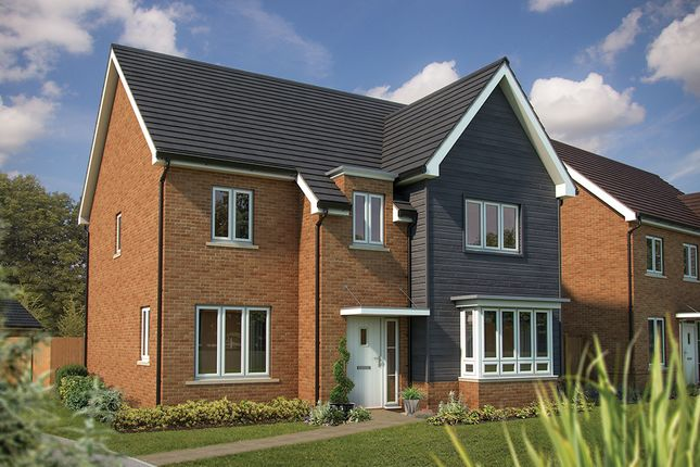 "Thumbnail Detached house for sale in ""The Birch"" at Mcnamara Street, Longhedge, Salisbury"