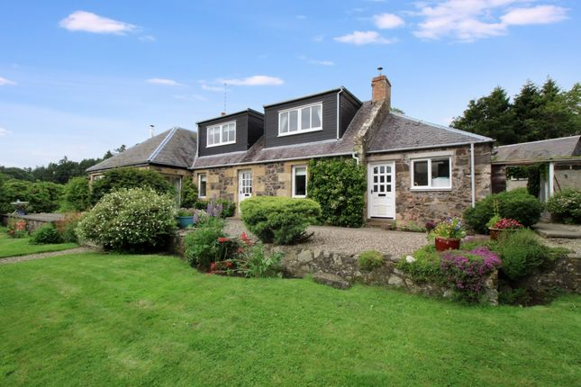 Thumbnail Detached house for sale in Dams Cottage, Rathillet