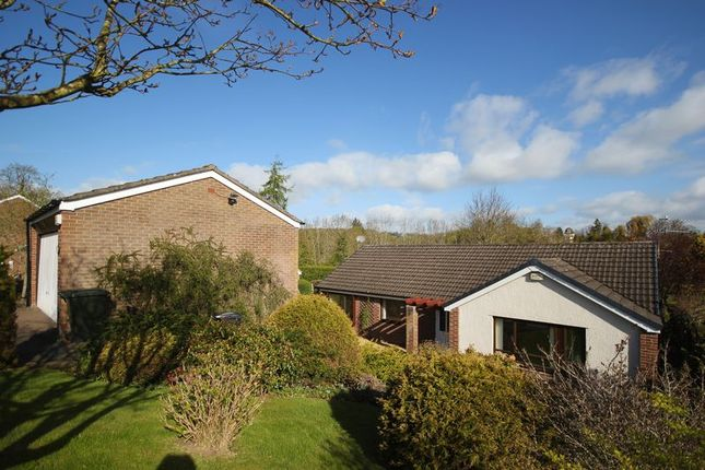 Thumbnail Detached bungalow for sale in Enderby Drive, Hexham