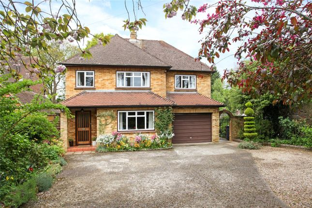 Thumbnail Detached house for sale in Braemar Close, Godalming, Surrey