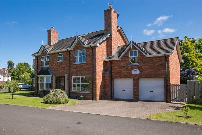 Thumbnail Detached house for sale in Culmeglen, Newtownabbey