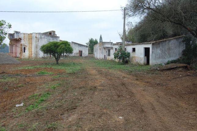Moncarapacho E Fuseta, Moncarapacho E Fuseta, Olhão