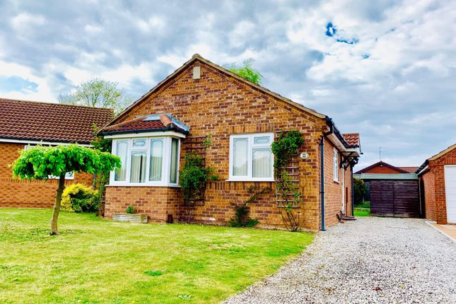 Thumbnail Detached bungalow to rent in Acer Court, Lincoln