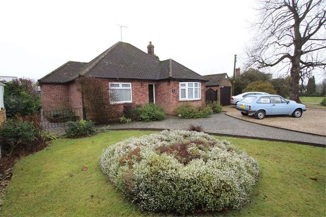 Thumbnail Detached bungalow for sale in School Road, Copford, Colchester, Essex