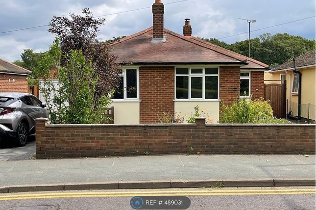 Thumbnail Bungalow to rent in Turner Road, Colchester