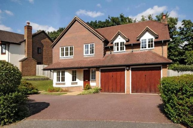 Thumbnail Detached house to rent in Rushmere Place, Englefield Green, Surrey