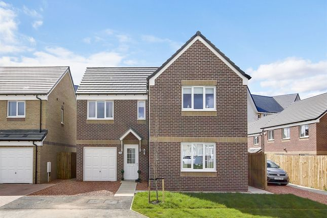 "Thumbnail Detached house for sale in ""The Lismore"" at Dunlop Road, Stewarton, Kilmarnock"