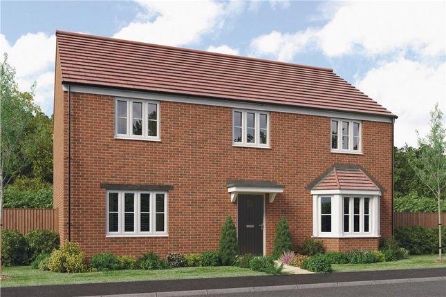 """Thumbnail Detached house for sale in """"Deddington"""" at Collins Drive, Bloxham, Banbury"""