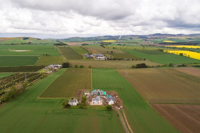 The-Property-Boom-Westmarch-Steading 1 Of 30