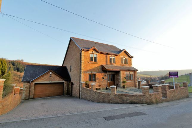 Thumbnail Detached house for sale in Pentre Beili Place, Lewistown
