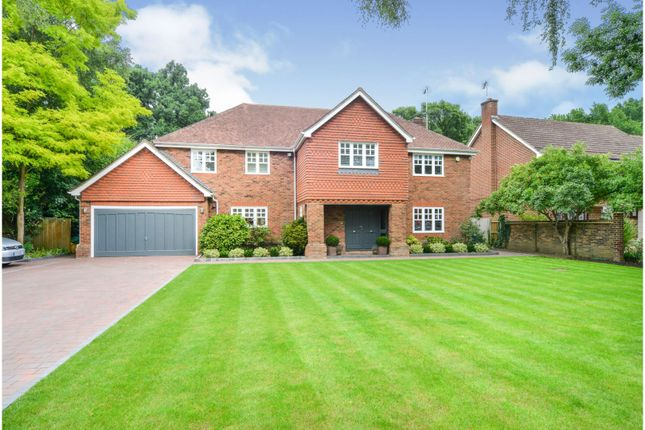 Thumbnail Detached house for sale in Warblers Green, Cobham