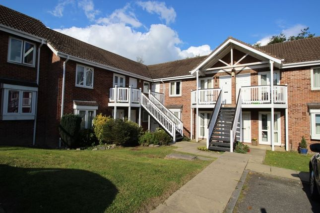 Thumbnail Flat to rent in Mill Close, Newton Abbot