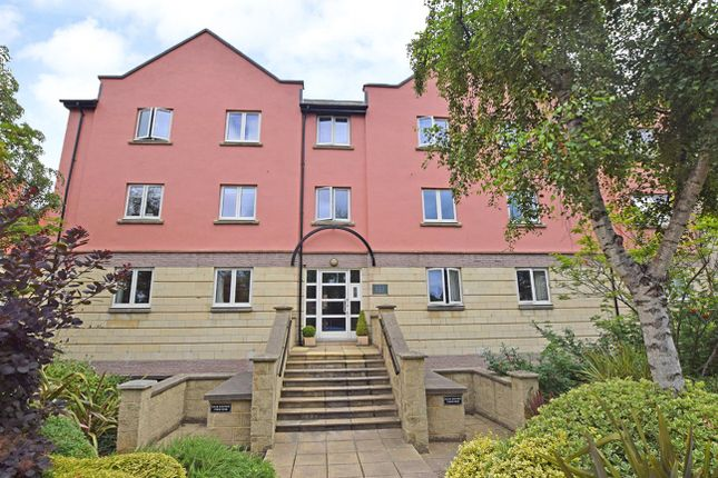Thumbnail Property to rent in Waterside, St. Thomas, Exeter