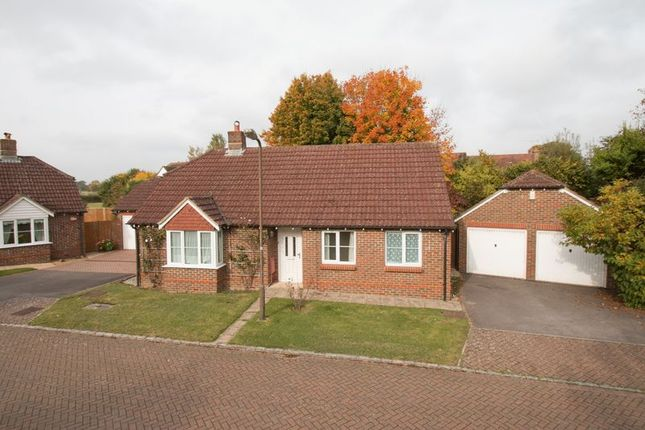Thumbnail Detached bungalow for sale in Abbots Close, Boxgrove, Chichester